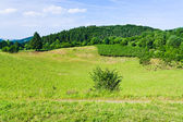 Landscape of low Eifel mountains — Stock Photo