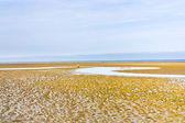 Low tide on sand beach in Normandy — Stock Photo