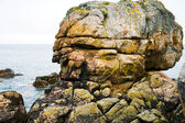 Pink granite rock in Brittany — Stock Photo