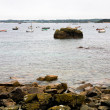 Pink Granite Coastline in Brittany — Stock Photo