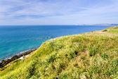 La Manche coastline in Normandy, France — Stock Photo