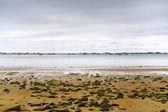 La manche coastline at low tide, Brittany — Stock Photo