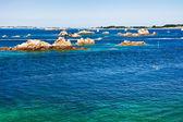 Granite rocks in Atlantic ocean in Brittany — Stock Photo