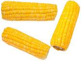 Вскипяченное зерно — Стоковое фото
