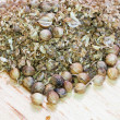 Freshly milled and dried coriander seeds — Stock Photo #27088495