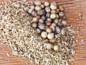 Dried coriander seeds — Stock Photo