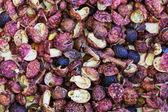 Sichuan pepper close up — Stock Photo
