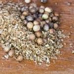 Coriander seeds spice — Stock Photo