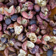 Hot Sichuan pepper — Stock Photo
