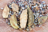 Dried cardamon spice — Stock Photo