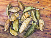 Kakuleden kurutulmuş tohumları — Stok fotoğraf