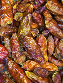Red small spicy peppers — Stock Photo