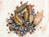 Dried cardamon seeds — Stock Photo
