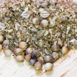 Milled coriander and dried coriander seeds — Stock Photo #27659827