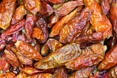 Red hot peppers close up — Stock Photo