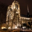 Cathedral Notre Dame de Paris at night — Stock Photo