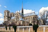 Katedralen notre-dame de paris och seine-floden — Stockfoto