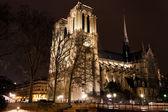 Katedral notre dame de paris gece — Stok fotoğraf