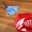 Stock Photo: Mopping of parquet floors