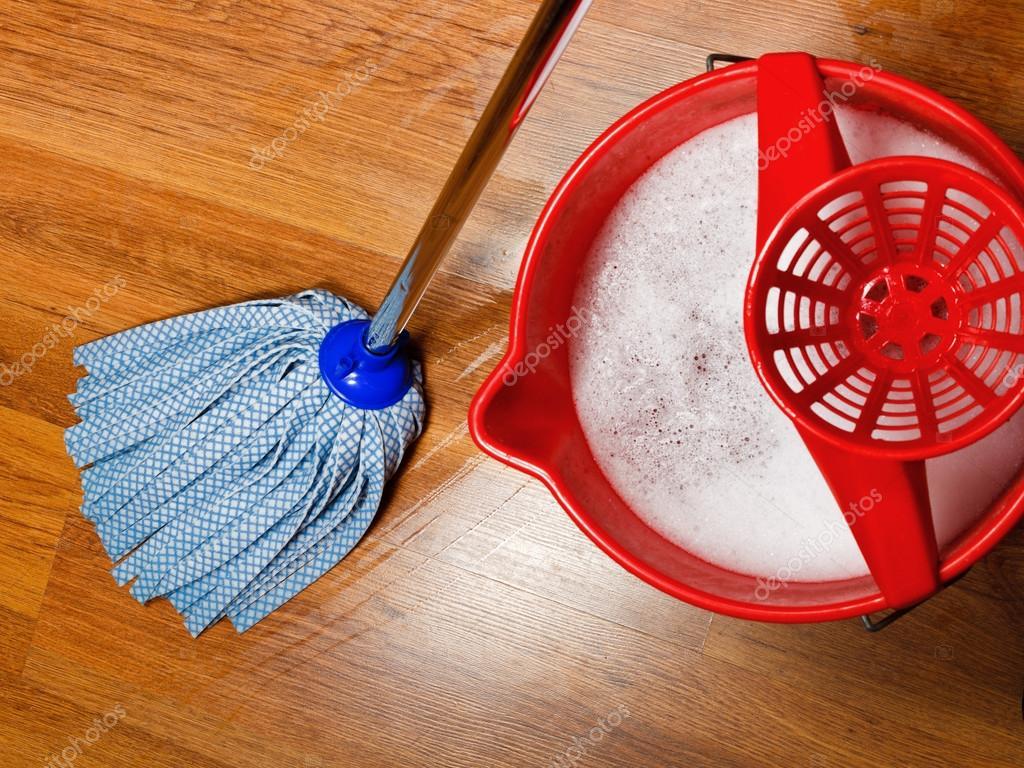 Esfreg 227 O E Um Balde Com 225 Gua Para A Limpeza De Pisos