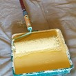Stock Photo: Roller brush with handle in plastic paint tray