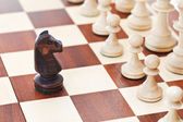 Black knight on chessboard — Stockfoto