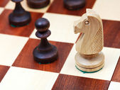 Wooden knight on chessboard — Stock Photo