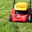 Stock Photo: Mowing green grass