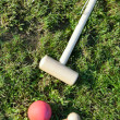 Game of croquet on green lawn — Stock Photo