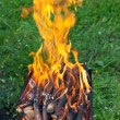 Tongues of flame on brazier — Stockfoto #30058123