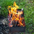 Tongues of flame on brazier — Stock Photo #30058149
