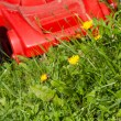 Green grass and red lawn mower — Stock Photo