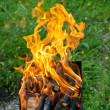 Tongues of flame on brazier — Stockfoto #30313699