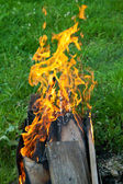 Tongues of flame on brazier — Stockfoto