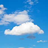 White cloud in blue sky in summer day — Stock Photo