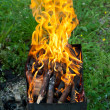 Stock Photo: Tongues of flame on brazier