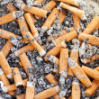 Many cigarette butts close up — Stock Photo
