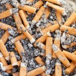 Many cigarette butts close up — Stock Photo #32913839