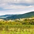 Panorama of caucasian mountains — Stock Photo