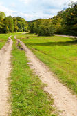 Two-track dirt country road — Stock Photo