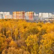 Urban panorama with autumn park — Stock Photo