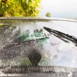 Car wipers wash windshield — Stok fotoğraf