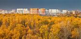 Miejski panorama park jesień — Zdjęcie stockowe