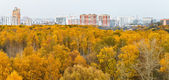 City panoramic view with autumn park — Stock Photo