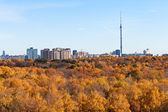 Panorama with TV tower and autumn fores — Stock Photo