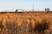 Autumn view of TV tower, houses and yellow trees — Stock Photo