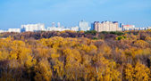 Panoramic view urban houses, autumn trees — Stock Photo