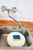 Washing-up by cleaning sponge — Stock Photo