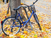 Bicycle parked on street with fallen leaves — Stock Photo