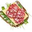 Rye bread, salami, cheese and rocket salad — Stock Photo